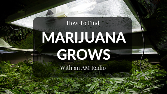 How to Find a Marijuana Grow With Your AM Radio – Graves and